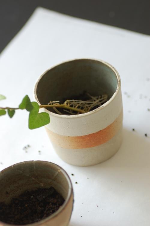鉢植え06